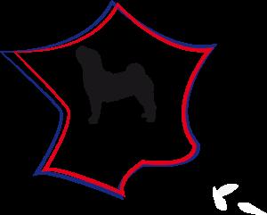 spcf logo2020